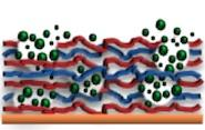 Biomolecules loaded into materials