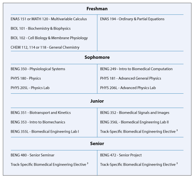 Biomedical Engineering college degree subjects