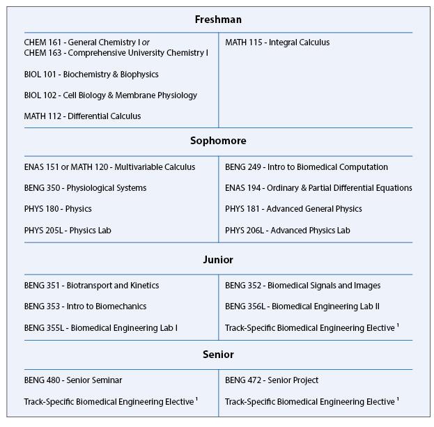 Biomedical Engineering Undergraduate Curriculum Information